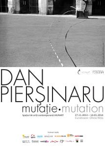 2013_11_27 Dan Piersinaru Afisul